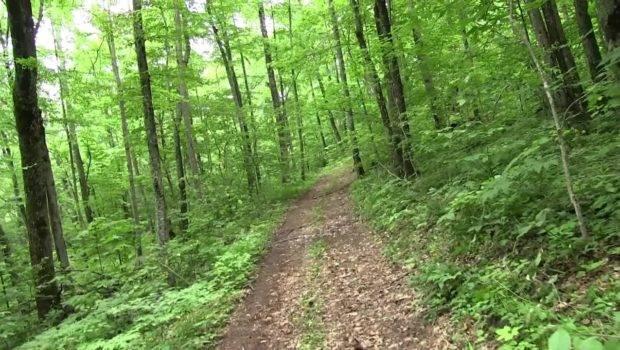 Living Blue Ridge Mountains Appalachia Part