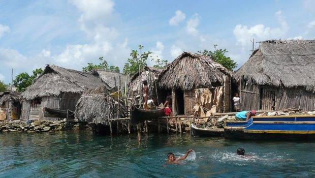 Living Indigenous Way Jungles