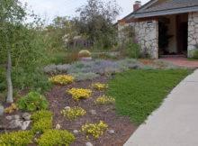 Lose Lawn Drought Tolerant Landscape Design