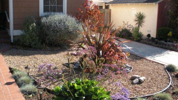 Make Simple Fresh Modern Drought Tolerant Landscaping