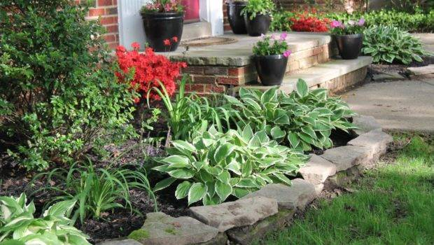 Make Vegetable Garden Archives Trends