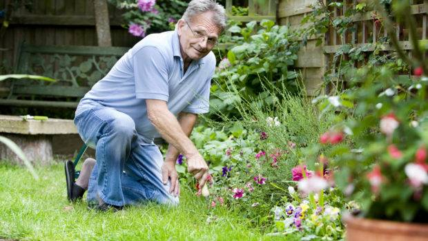 Master Gardeners Washington County