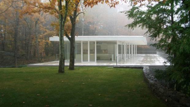 Modern House Forest