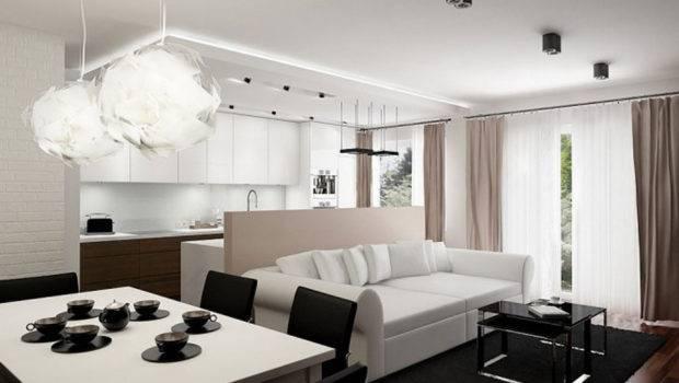 Modern Small Flat Interior Design Apartment
