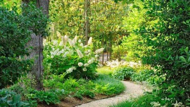 Most Beautiful Diy Garden Path Ideas Piece Rainbow