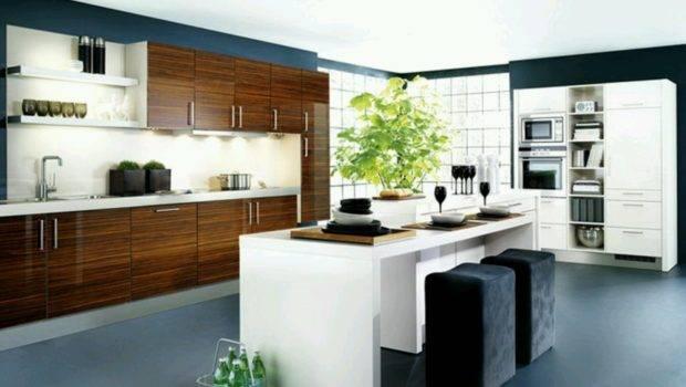 New Home Designs Latest Kitchen Cabinets Modern
