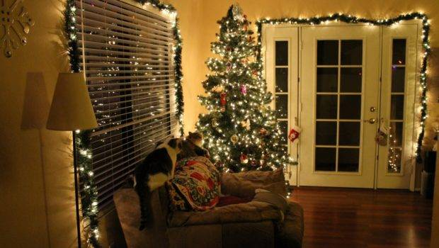 November Emilylohanca Christmas Decorations Indoor