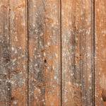 Old Wooden Wall Wood Texture Myfreetextures