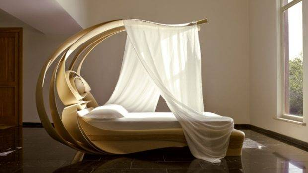 Organic Shape High End Canopy Bed Beyond Unique