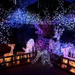 Outdoor Christmas Decorations Public Domain