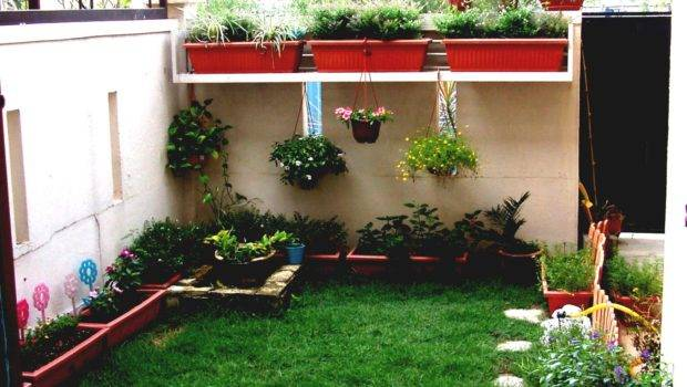 Outdoor Garden Ideas Budget Ftempo