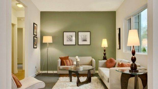 Paint Ideas Living Room Accent Wall