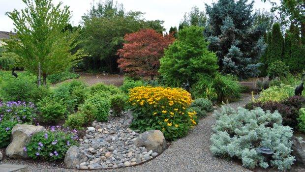 Portland Landscaping Soggy Lawns