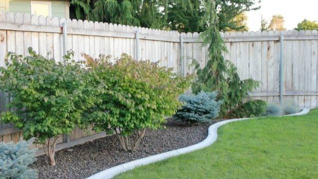Pro Portfolio Sustainable Garden Makeover Outdoor Living