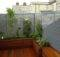 Roof Garden Ideas Flowergardengirl London Small