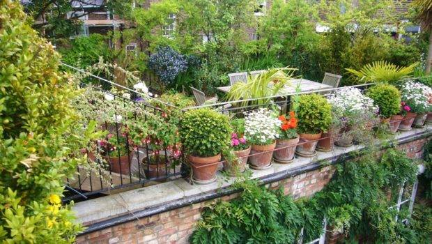 Rooftop Garden Designs Luxury Modern Roof Idea