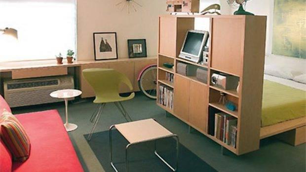 Room Divider Ideas Studio Apartments Amazing