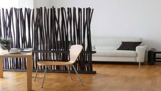 Room Divider Ideas Studio Apartments