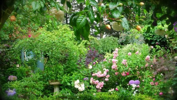 Secret Garden Lorenzo Casini