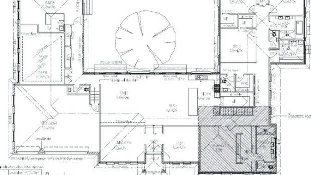 Shaped House Courtyard Plantas