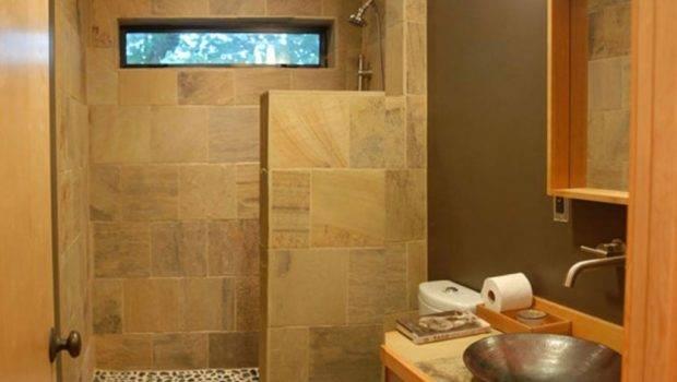 Shower Small Bathroom Ideas Design Inspiration Only