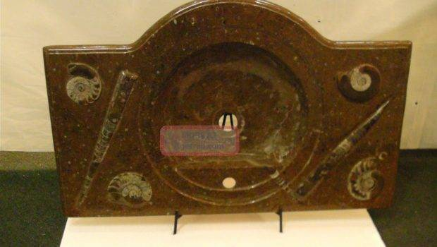 Sink Top Made Orthoceras Ammonite Fossil Interior Decor
