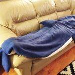 Slide Into Cozy Shark Sleeping Bag Hide Toothy