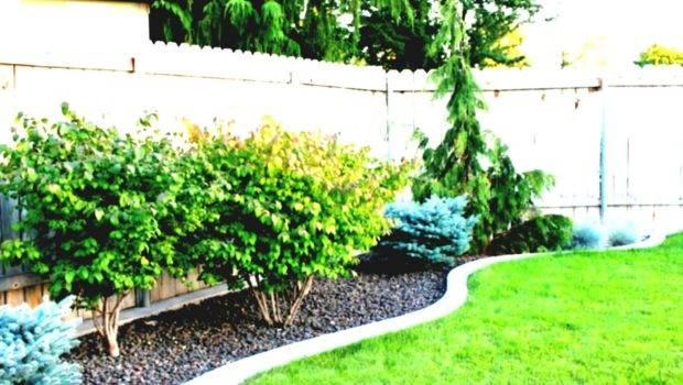 Small Backyard Design Ideas Budget