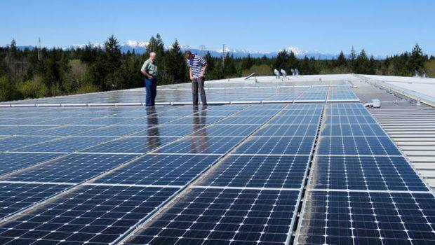 Solar Panels Can Walk Drive Across Debut