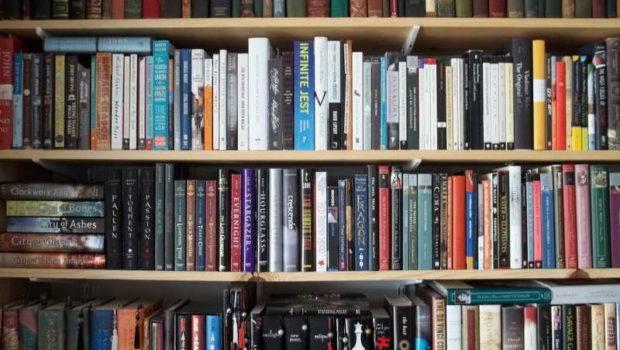 Storage Ideas Wall Shelves Books