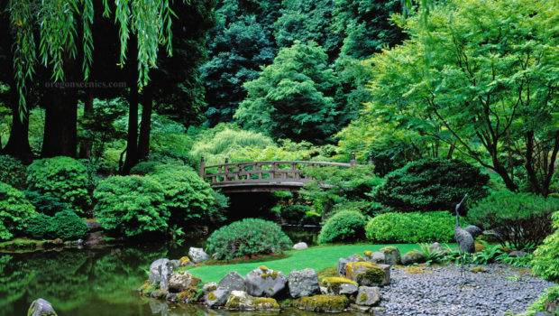 Stylish Japanese Gardens Garden Pond Spring