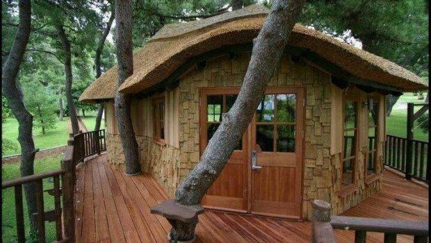 Sweet Retreat Suit Tree House Houses Pinterest
