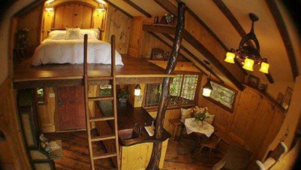 Sweet Tree House Loft Homes Rooms Pinterest