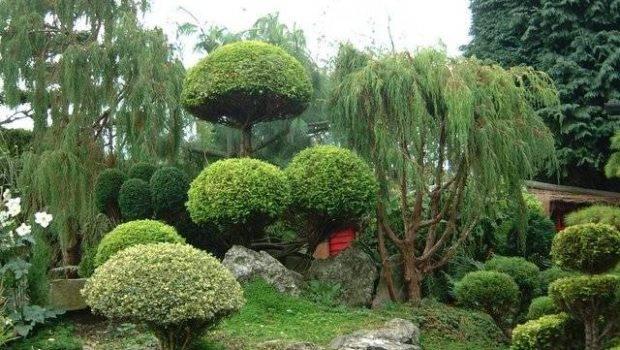 Terrace Garden Designs Japanese Design Plans