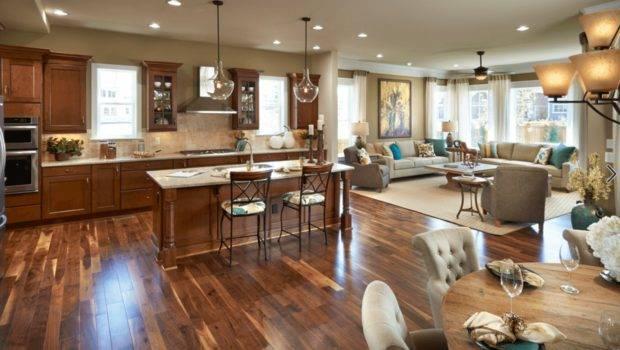 Tips Tricks Charming Open Floor Plan Home Design