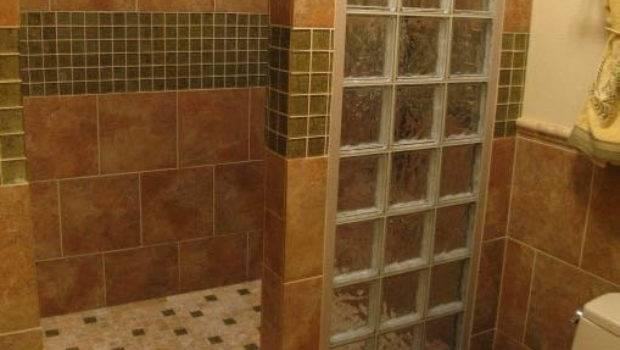 Walk Shower Ideas Bold Interesting