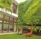 Wall Indoor Vertical Garden Diy