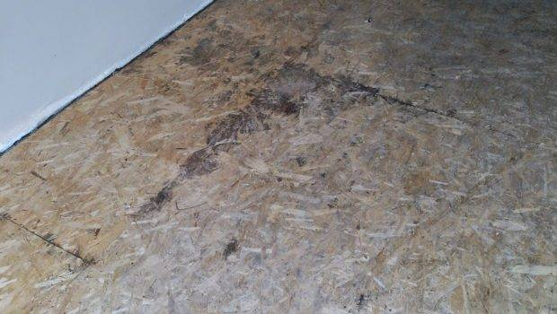 Wood Particle Board Which Had Become Badly Stained Water Damage
