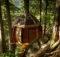 World Best Tree Houses